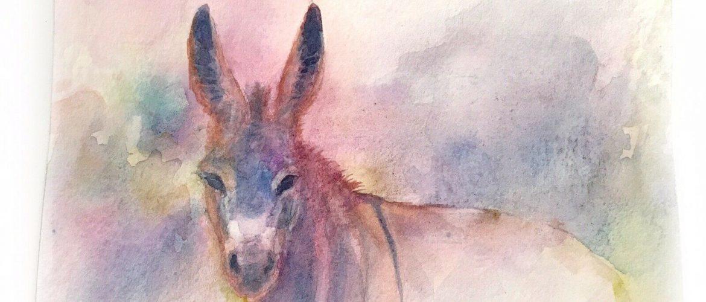 Original painting Donkey Wildlife Watercolor Art Artwork direct from artist USA