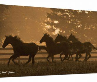 Somerset Fine Art RDA033GIUSN0816 Running for Home II Artwork