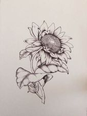 Tattoo Flower Design Sketches Botanical Illustration 47 New Ideas