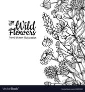 Wild flowers vector drawing set. Isolated meadow plants and leaves. Herbal engra…