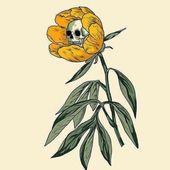 digital art illustration sketch flower poppy and skeleton skull