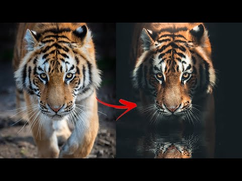 How to Turn Photography into Fine Art in Photoshop