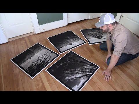 Fine Art Photography: Ocotillo Prints