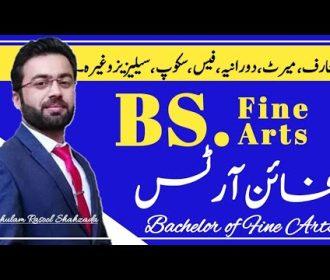 Fine Arts   Scope of BS fine arts in pakistan   Bachelor of Fine Arts   BFA   Course detail fine art
